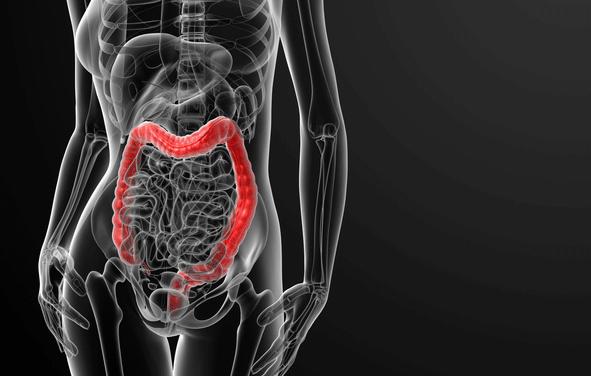 Darmkrebs frühzeitig erkennen mit dem iFOBT-Stuhltest